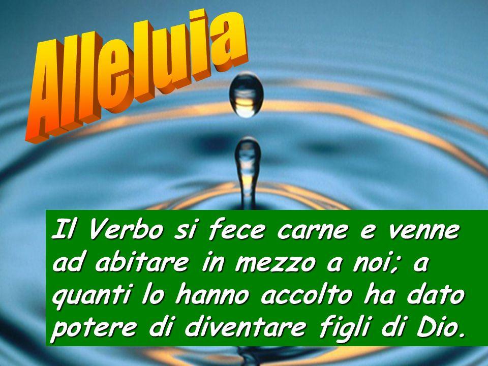 Alleluia Il Verbo si fece carne e venne ad abitare in mezzo a noi; a quanti lo hanno accolto ha dato potere di diventare figli di Dio.