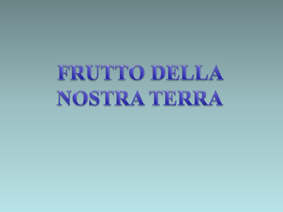 FRUTTO DELLA NOSTRA TERRA