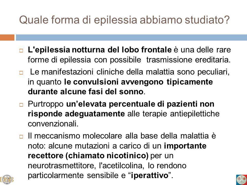 Quale forma di epilessia abbiamo studiato