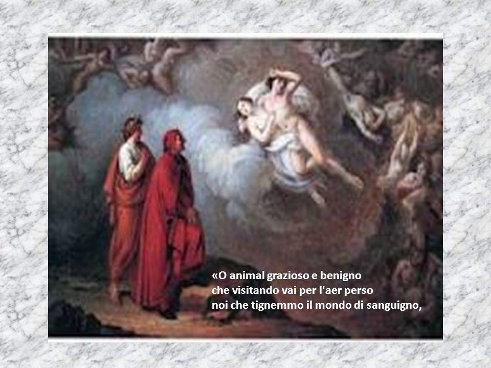 «O animal grazioso e benigno che visitando vai per l aer perso noi che tignemmo il mondo di sanguigno,