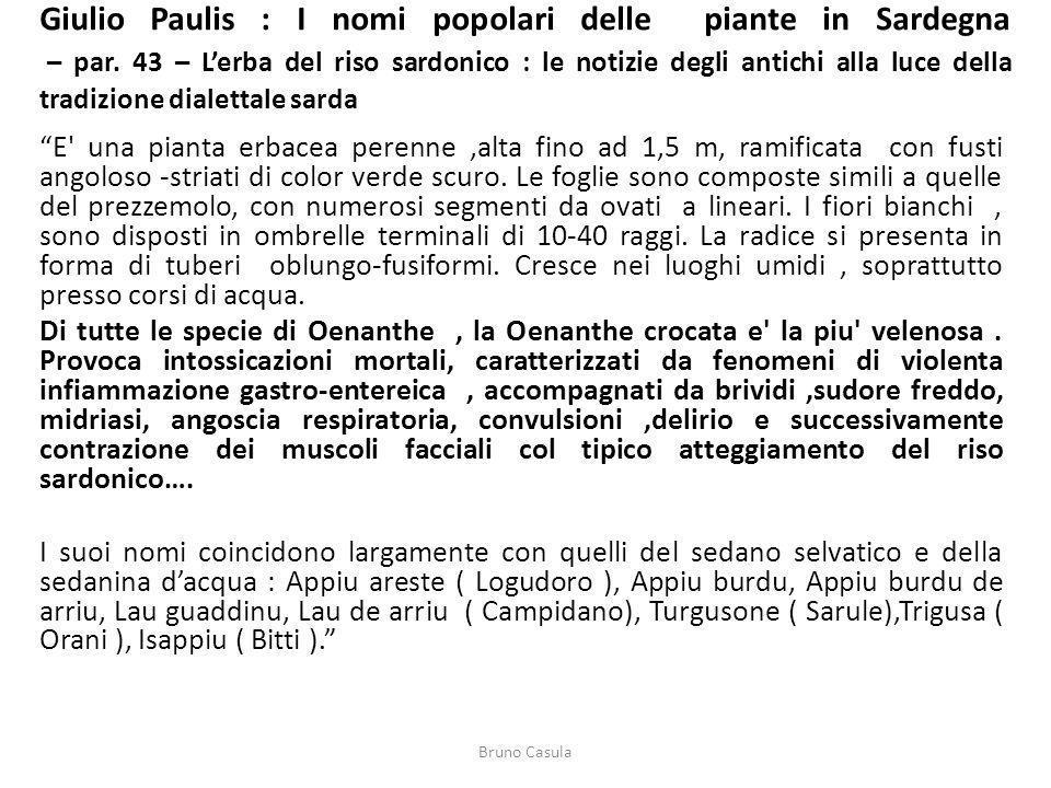 Giulio Paulis : I nomi popolari delle piante in Sardegna – par
