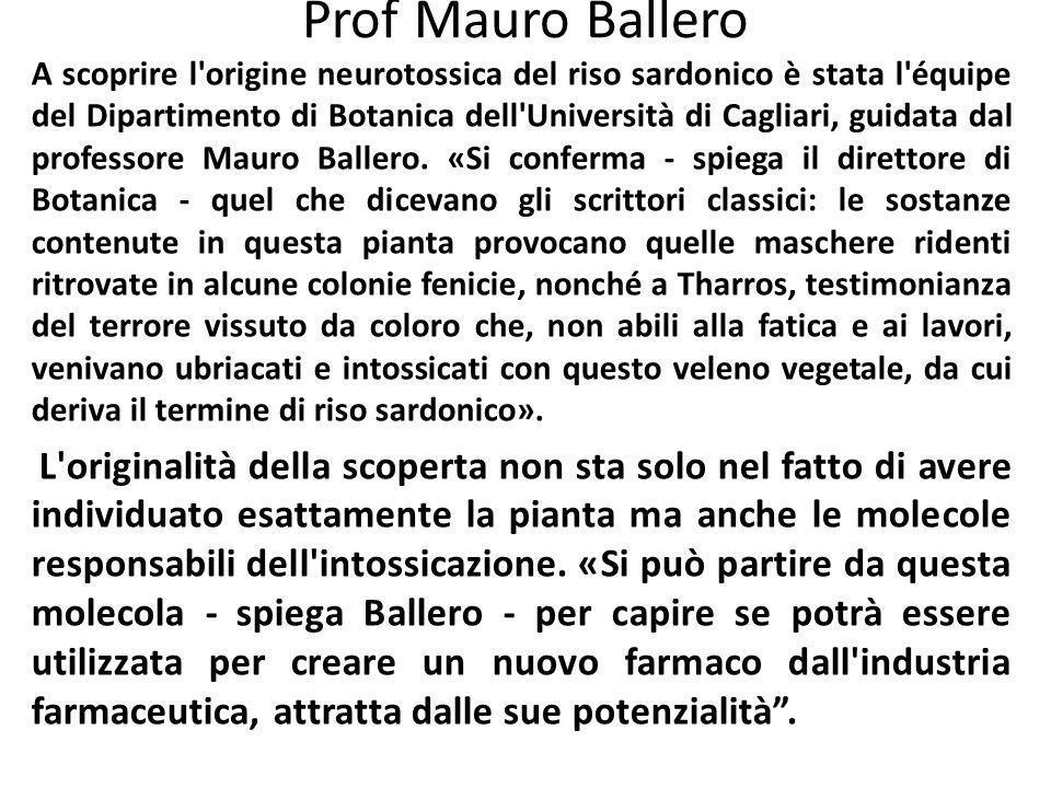 Prof Mauro Ballero