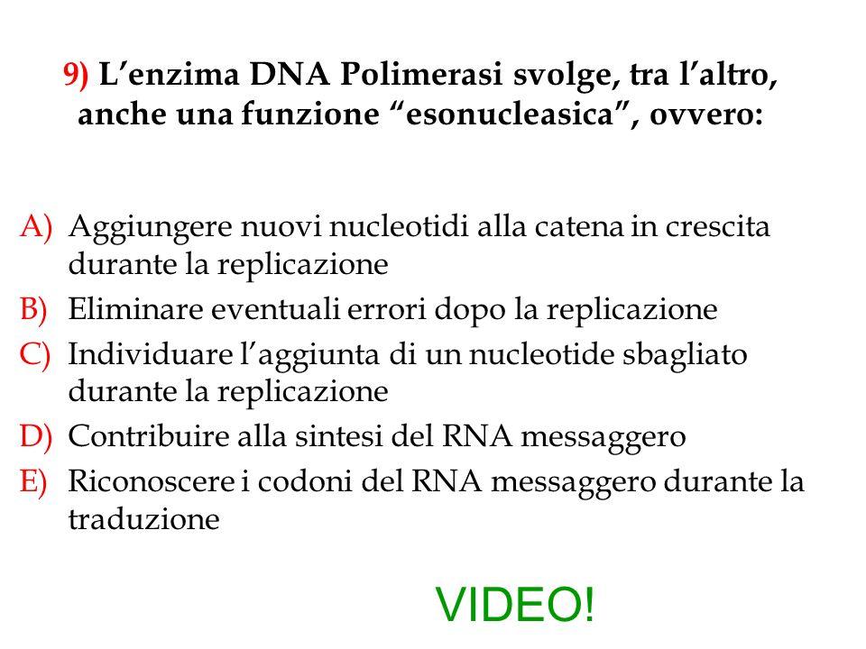 9) L'enzima DNA Polimerasi svolge, tra l'altro, anche una funzione esonucleasica , ovvero: