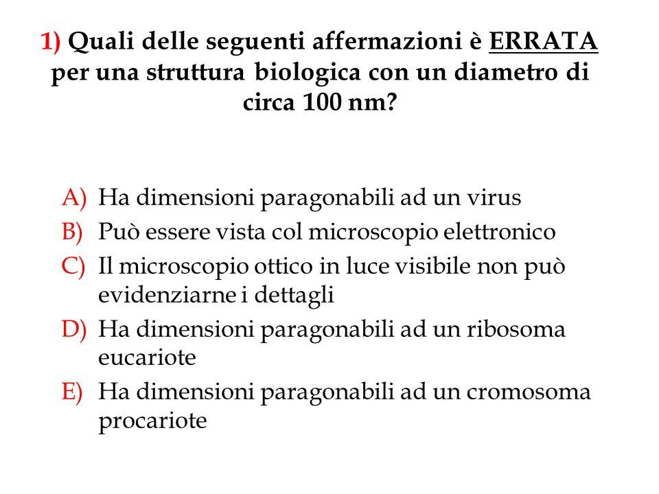 1) Quali delle seguenti affermazioni è ERRATA per una struttura biologica con un diametro di circa 100 nm