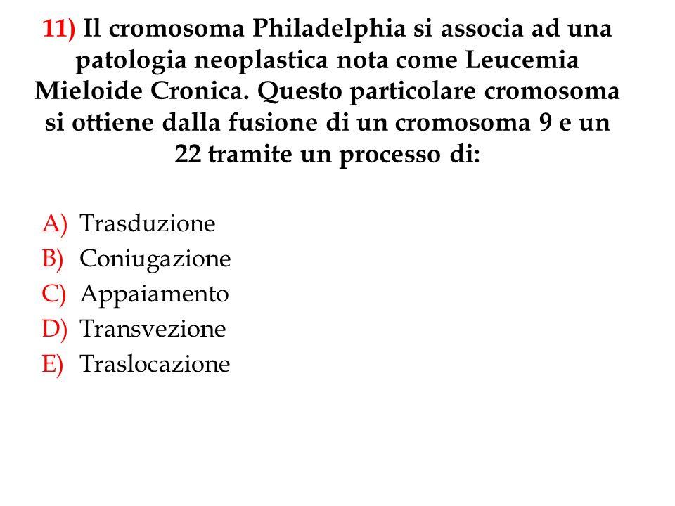 11) Il cromosoma Philadelphia si associa ad una patologia neoplastica nota come Leucemia Mieloide Cronica. Questo particolare cromosoma si ottiene dalla fusione di un cromosoma 9 e un 22 tramite un processo di: