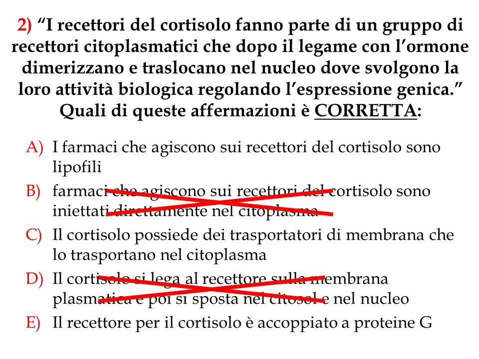 2) I recettori del cortisolo fanno parte di un gruppo di recettori citoplasmatici che dopo il legame con l'ormone dimerizzano e traslocano nel nucleo dove svolgono la loro attività biologica regolando l'espressione genica. Quali di queste affermazioni è CORRETTA: