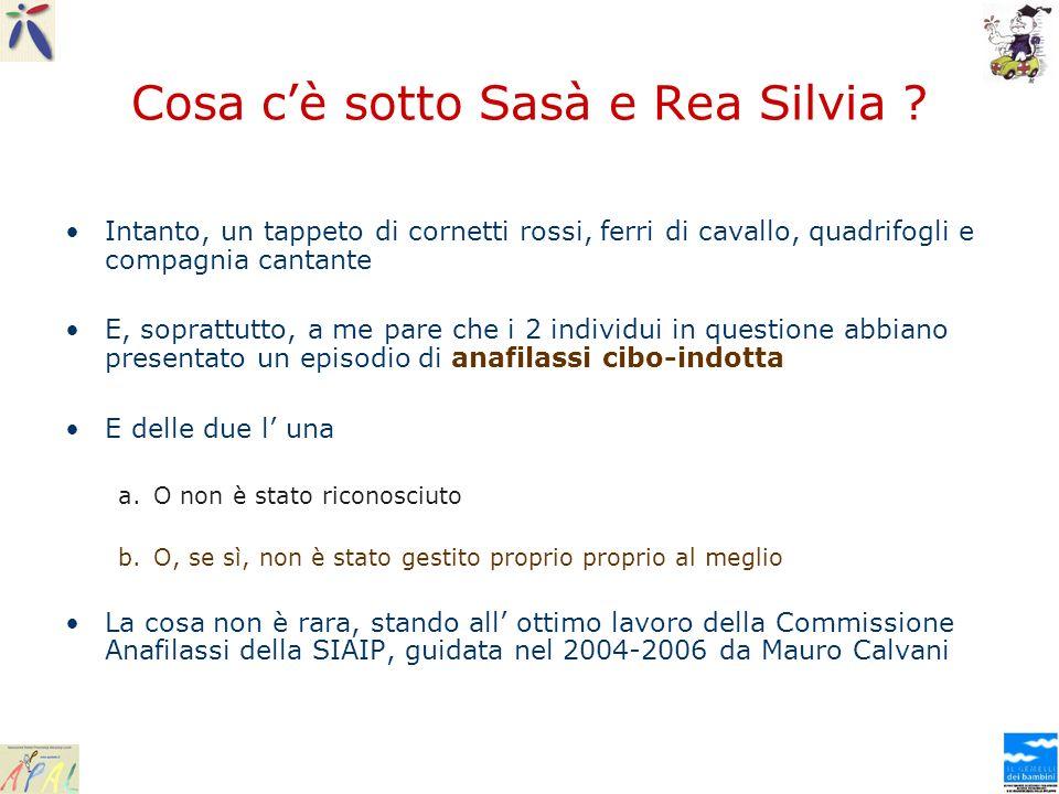 Cosa c'è sotto Sasà e Rea Silvia