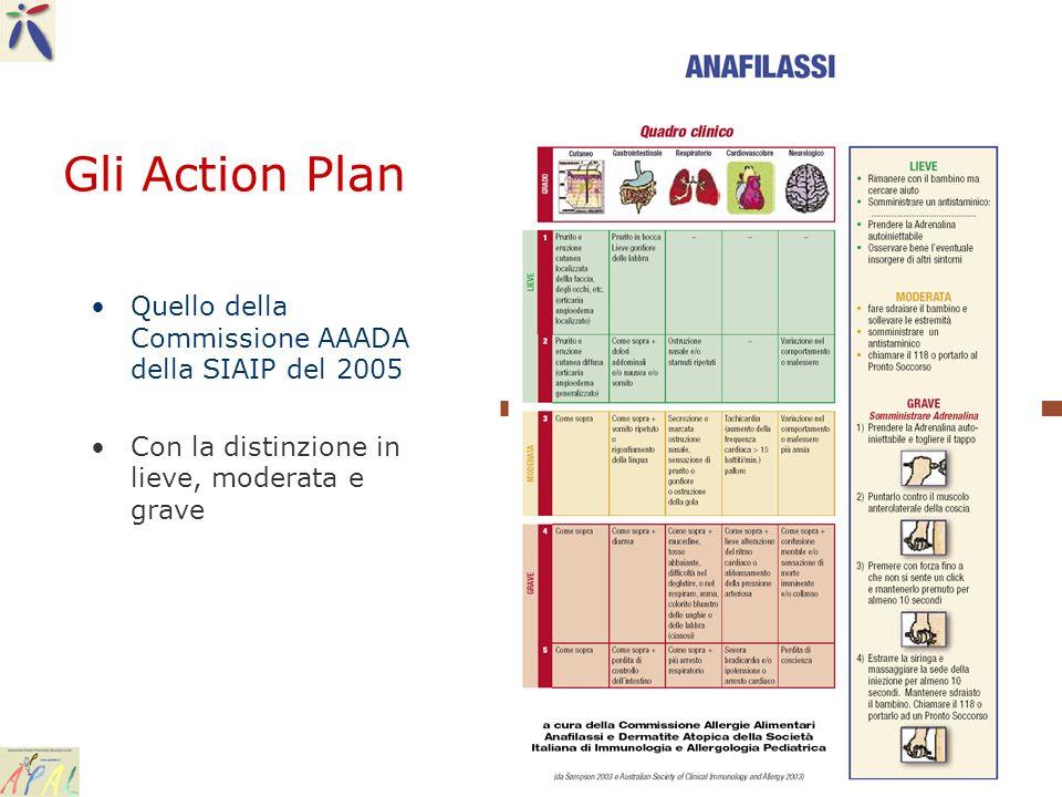 Gli Action Plan Quello della Commissione AAADA della SIAIP del 2005