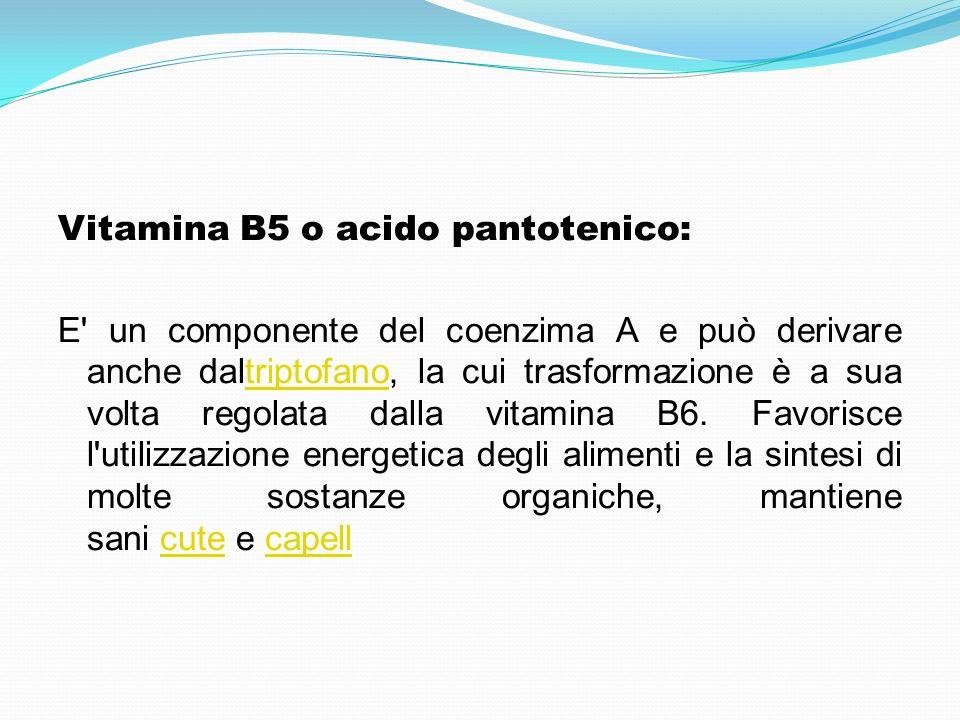 Vitamina B5 o acido pantotenico: E un componente del coenzima A e può derivare anche daltriptofano, la cui trasformazione è a sua volta regolata dalla vitamina B6.