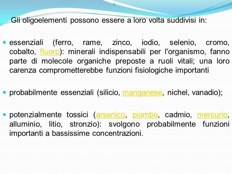 probabilmente essenziali (silicio, manganese, nichel, vanadio);
