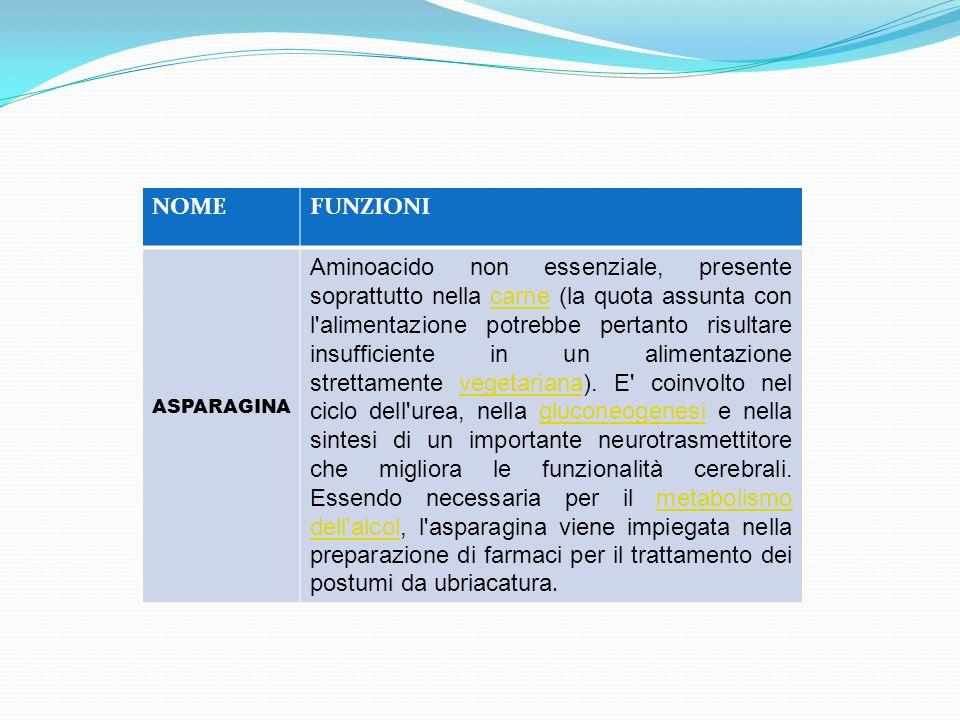 NOME FUNZIONI. ASPARAGINA.