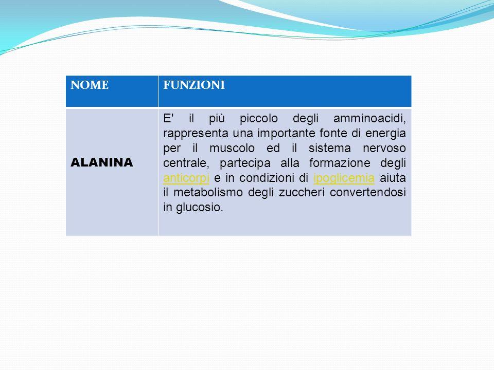 NOME FUNZIONI. ALANINA.