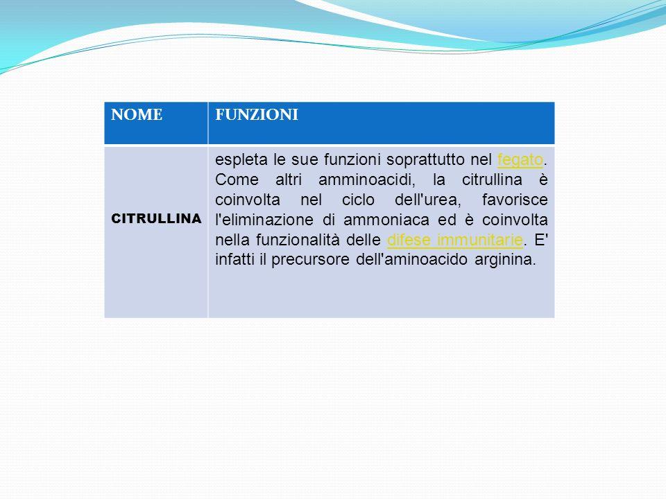 NOME FUNZIONI. CITRULLINA.