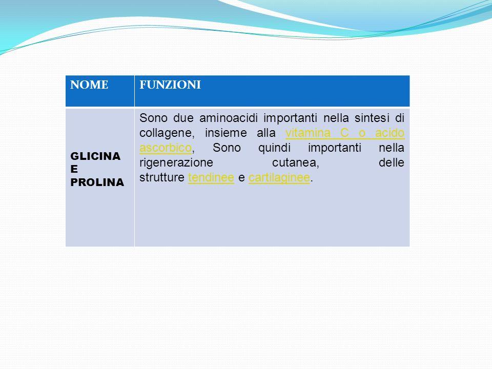 NOME FUNZIONI. GLICINA. E PROLINA.
