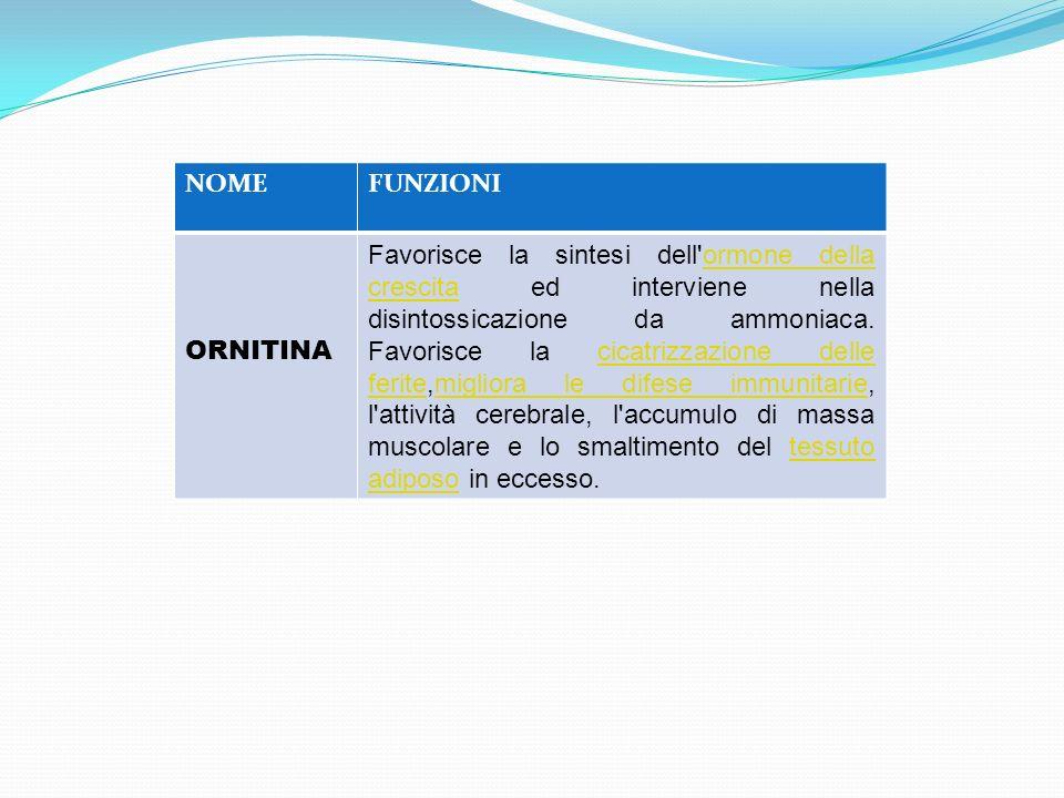 NOME FUNZIONI. ORNITINA.