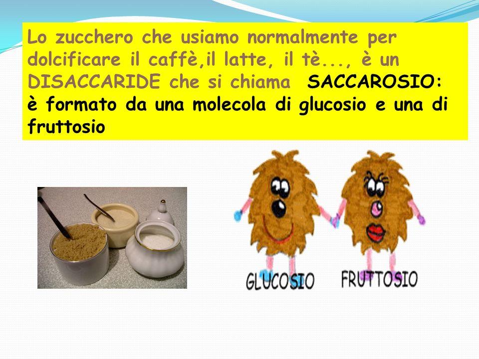 Lo zucchero che usiamo normalmente per dolcificare il caffè,il latte, il tè..., è un DISACCARIDE che si chiama SACCAROSIO: è formato da una molecola di glucosio e una di fruttosio