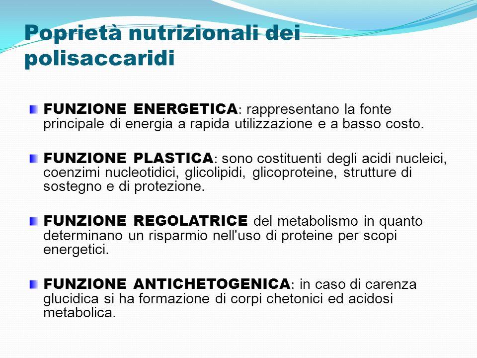 Poprietà nutrizionali dei polisaccaridi