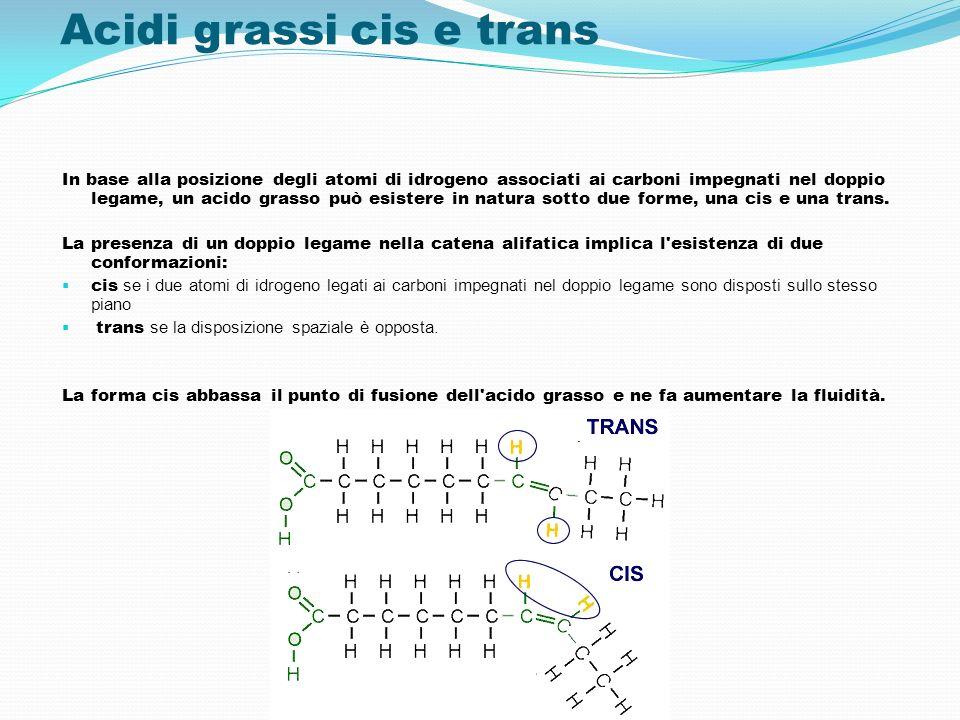 Acidi grassi cis e trans