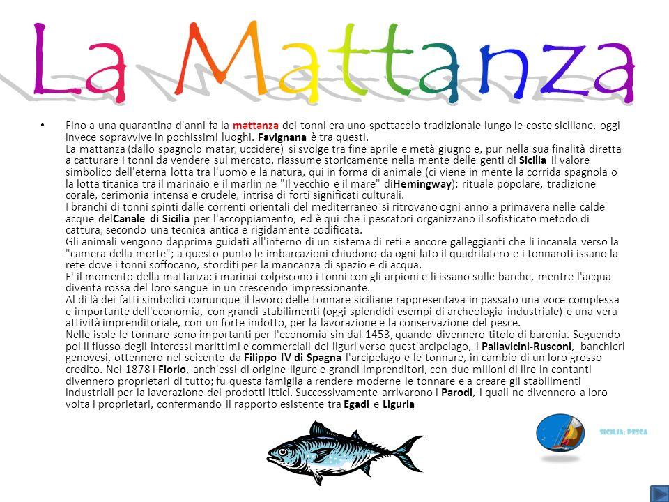 La Mattanza