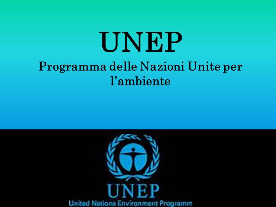 UNEP Programma delle Nazioni Unite per l'ambiente