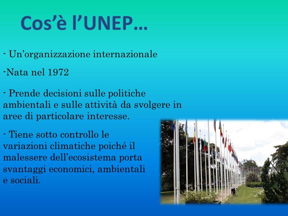Cos'è l'UNEP… - Un'organizzazione internazionale. -Nata nel 1972.