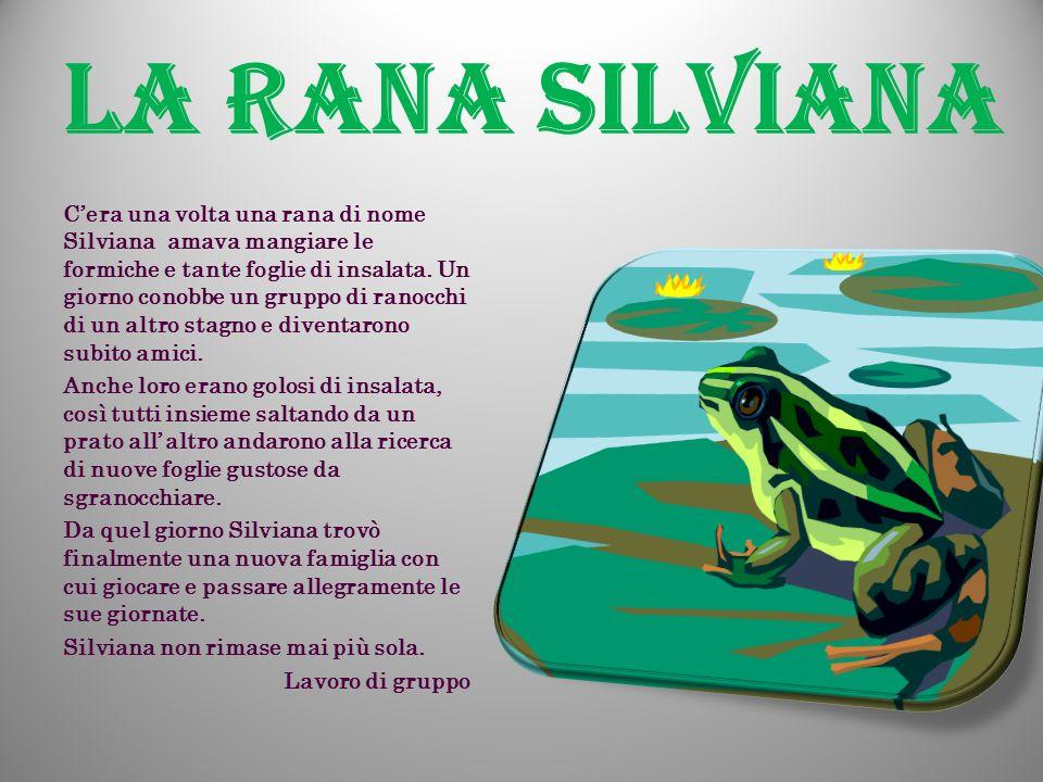 La rana Silviana