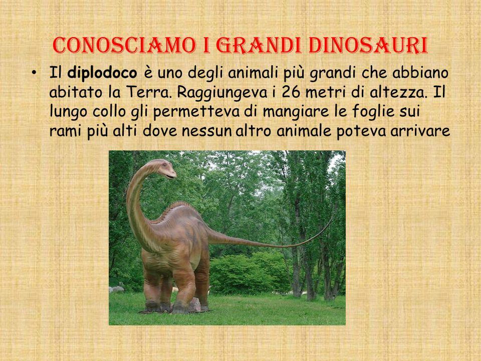 Conosciamo i grandi dinosauri