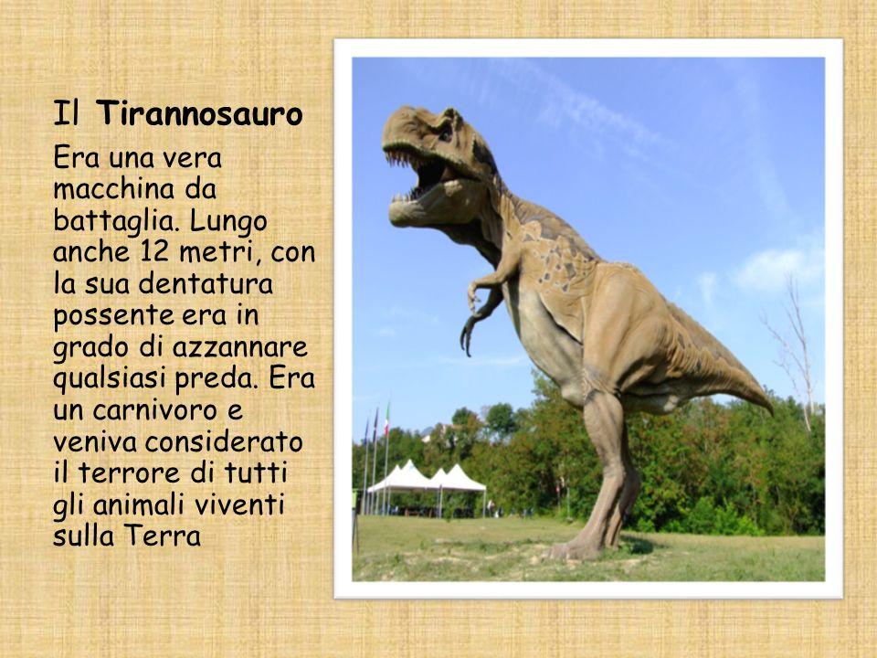 Il Tirannosauro