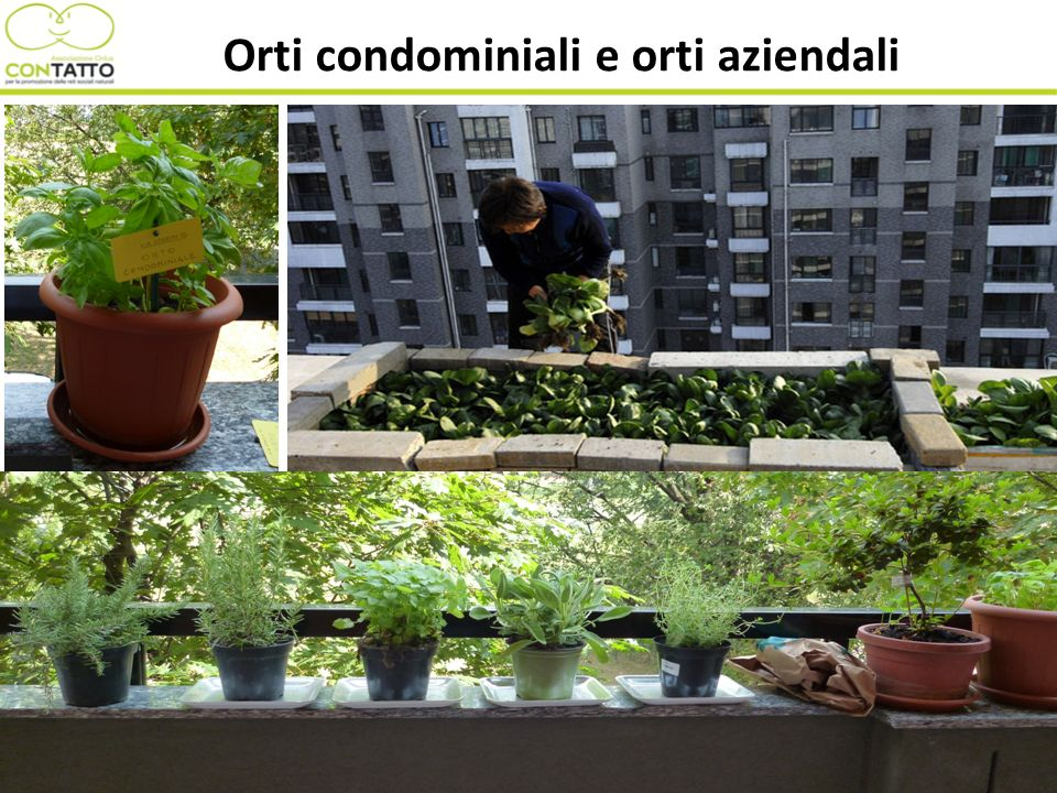 Orti condominiali e orti aziendali