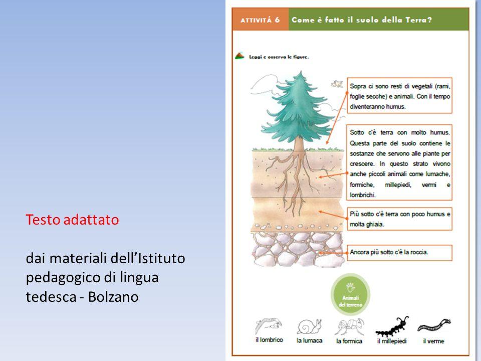 Testo adattato dai materiali dell'Istituto pedagogico di lingua tedesca - Bolzano