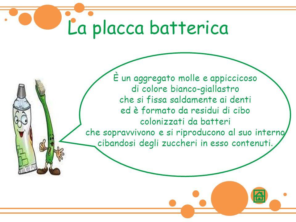 La placca batterica È un aggregato molle e appiccicoso