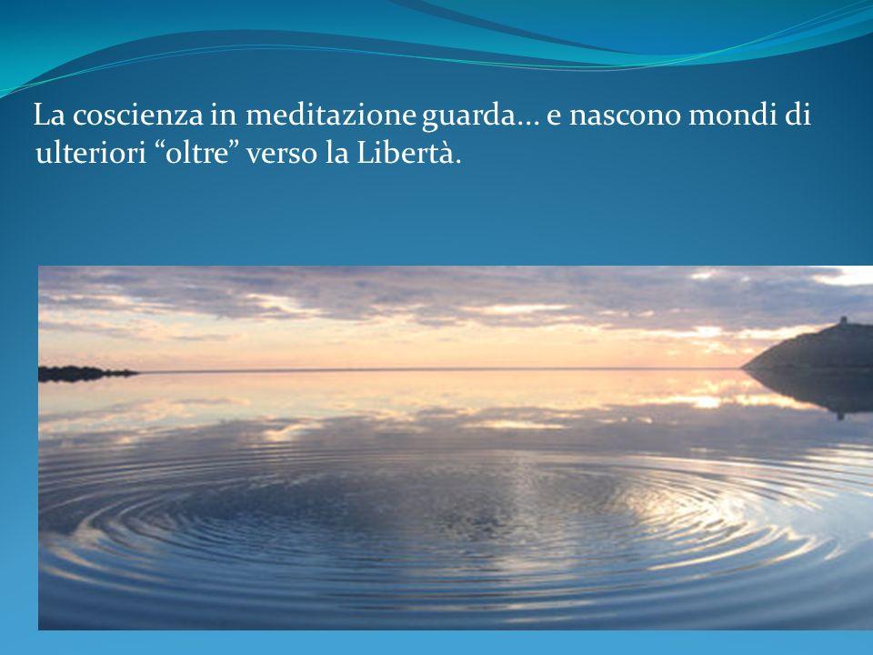 La coscienza in meditazione guarda
