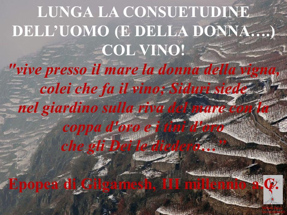 LUNGA LA CONSUETUDINE DELL'UOMO (E DELLA DONNA….) COL VINO!
