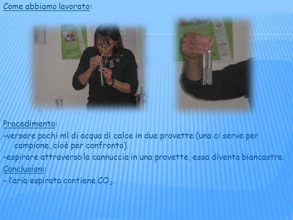 Come abbiamo lavorato: Procedimento: -versare pochi ml di acqua di calce in due provette (una ci serve per campione, cioè per confronto).