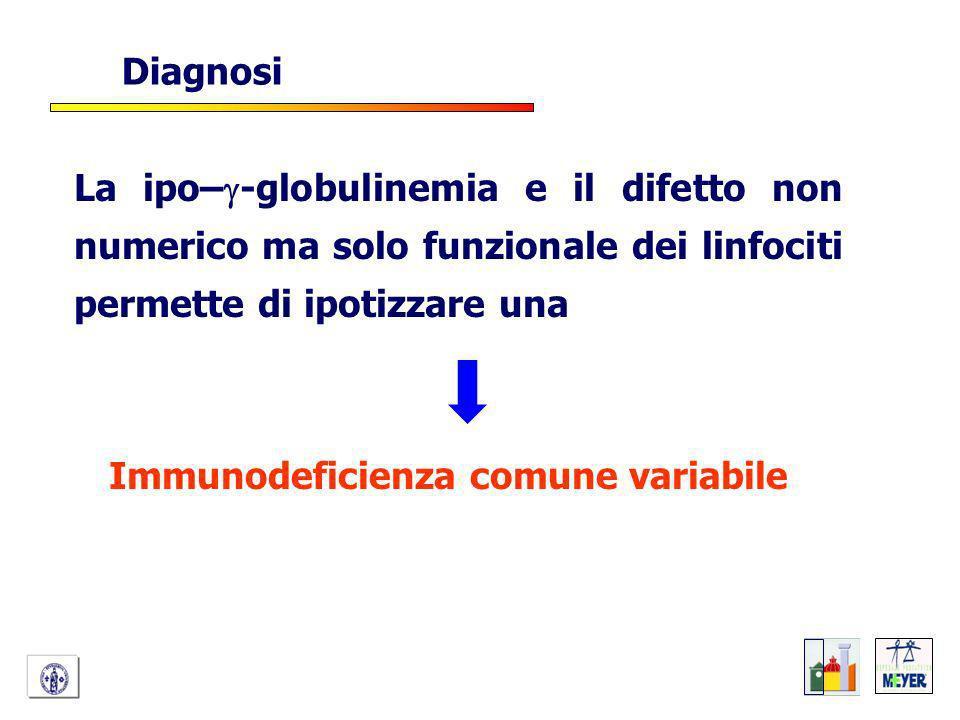 Diagnosi La ipo–g-globulinemia e il difetto non numerico ma solo funzionale dei linfociti permette di ipotizzare una.