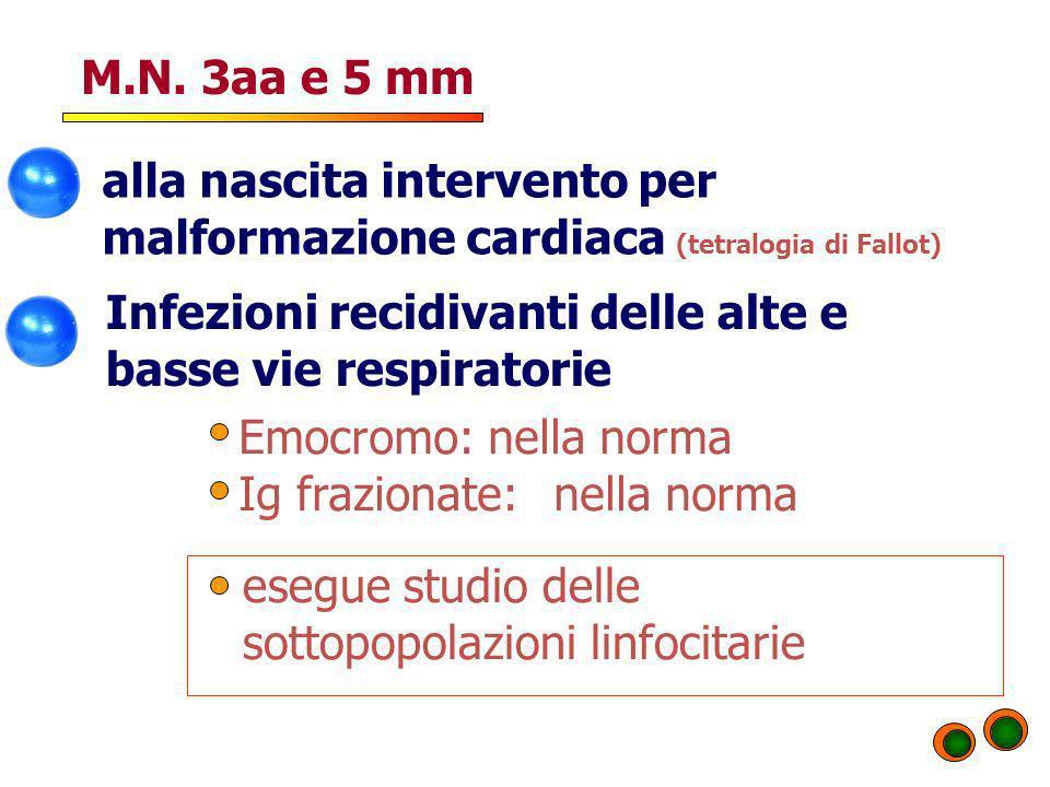 M.N. 3aa e 5 mm alla nascita intervento per malformazione cardiaca (tetralogia di Fallot) Infezioni recidivanti delle alte e basse vie respiratorie.