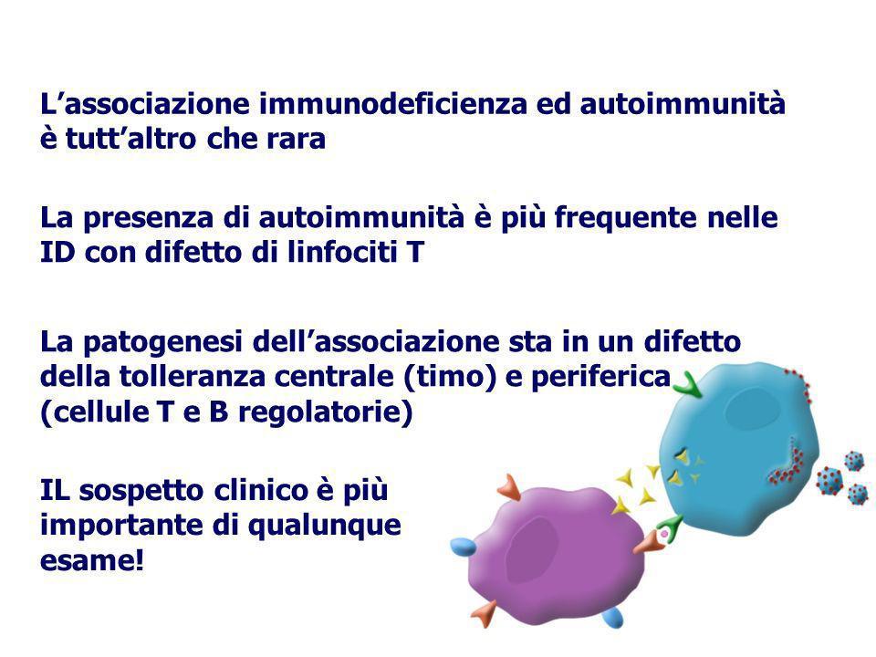 L'associazione immunodeficienza ed autoimmunità è tutt'altro che rara