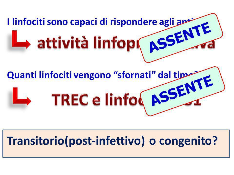 attività linfoproliferativa