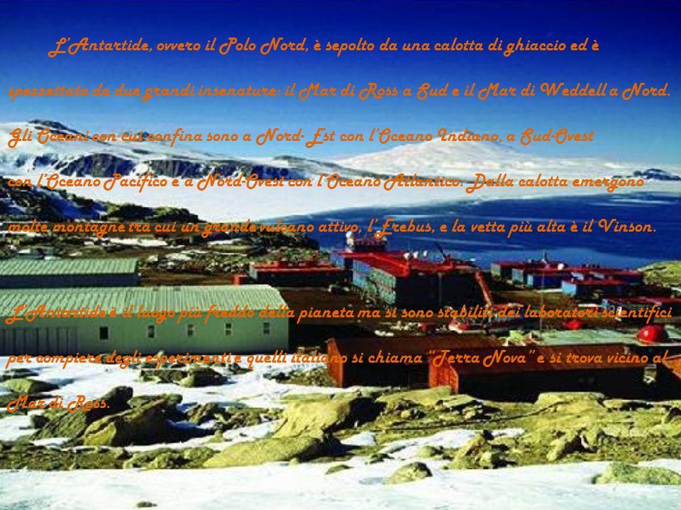 L'Antartide, ovvero il Polo Nord, è sepolto da una calotta di ghiaccio ed è