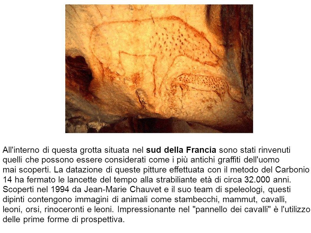 All interno di questa grotta situata nel sud della Francia sono stati rinvenuti