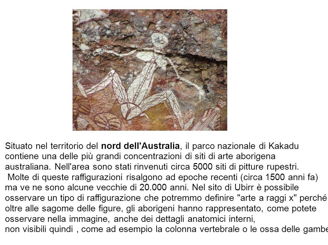 Situato nel territorio del nord dell Australia, il parco nazionale di Kakadu