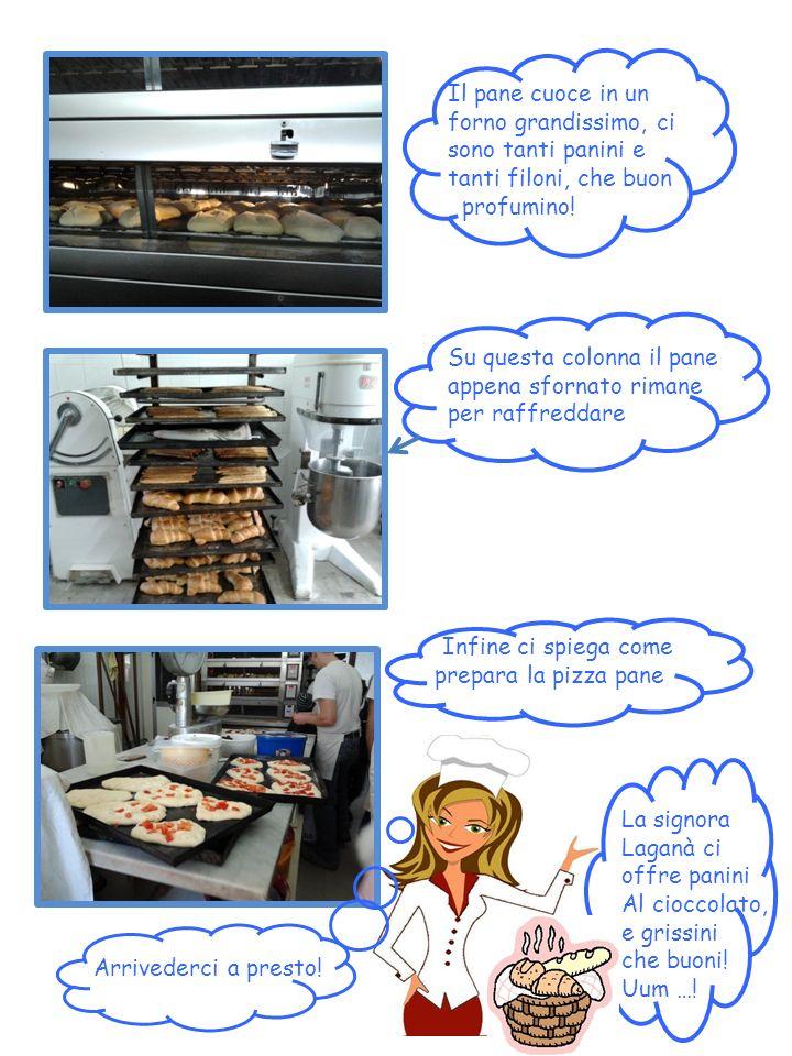 Il pane cuoce in un forno grandissimo, ci sono tanti panini e