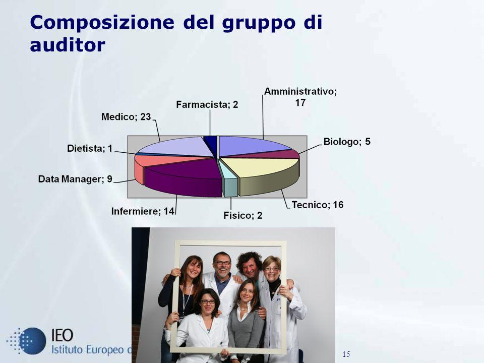 Composizione del gruppo di auditor