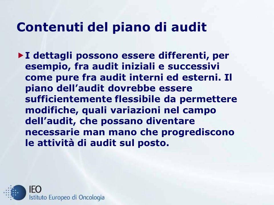 Contenuti del piano di audit