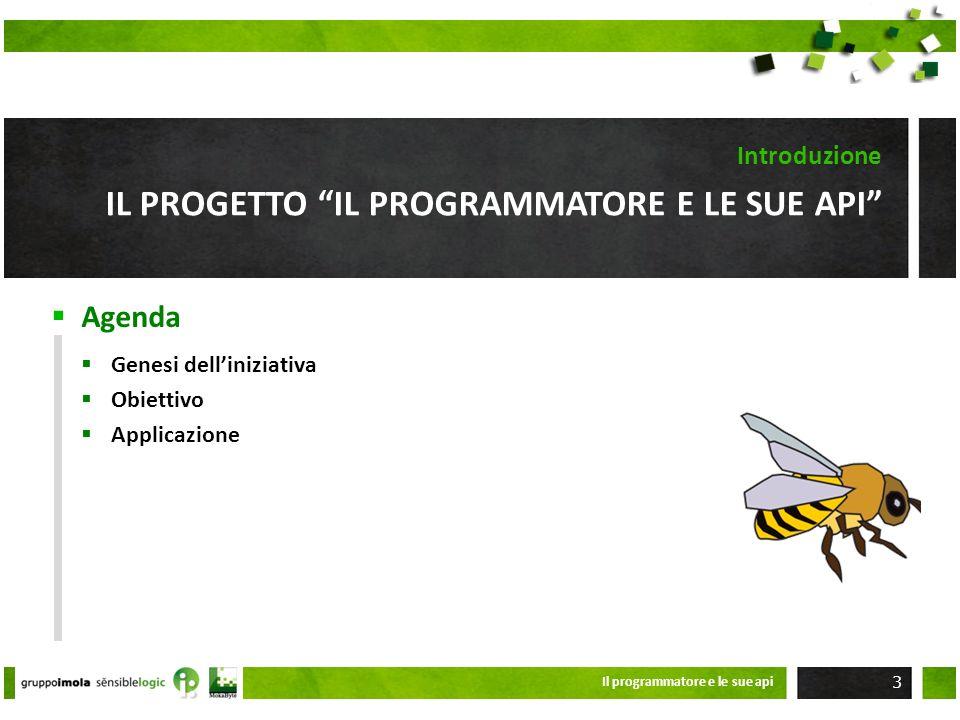 Il progetto il programmatore e le sue api