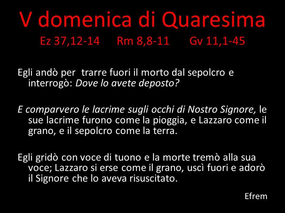 V domenica di Quaresima Ez 37,12-14 Rm 8,8-11 Gv 11,1-45