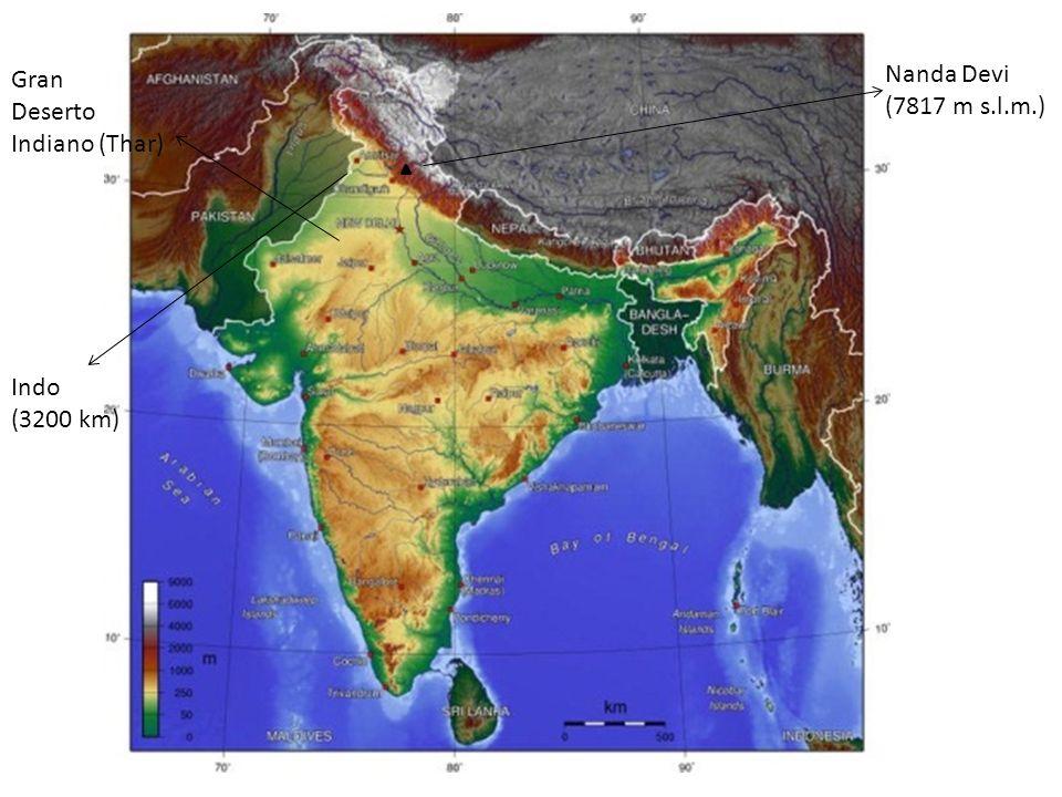 Gran Deserto Indiano (Thar) Nanda Devi (7817 m s.l.m.) Indo (3200 km)