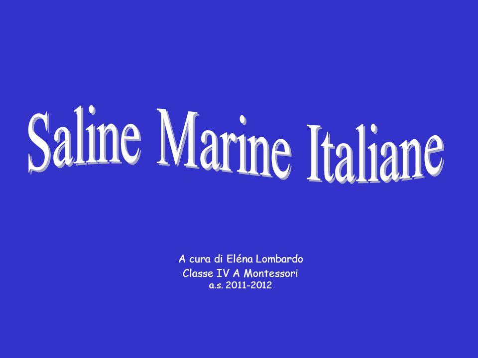 Saline Marine Italiane