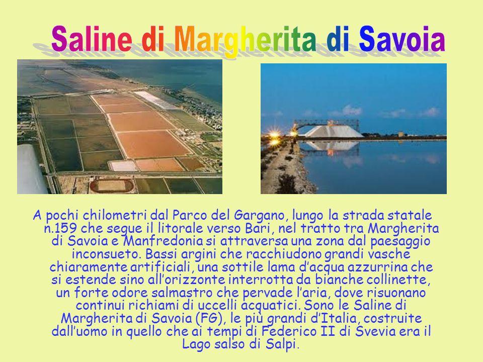 Saline di Margherita di Savoia