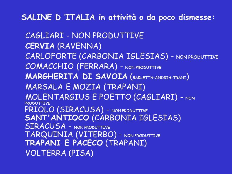 SALINE D 'ITALIA in attività o da poco dismesse: